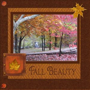 2 Fall Beauty.jpg