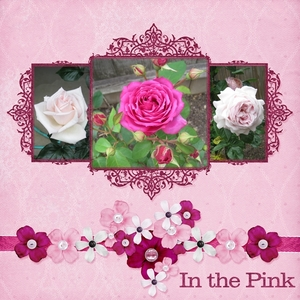 Saturday Color Challenge Jun 23 - In the Pink