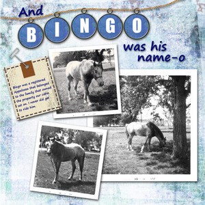 And Bingo Was His Name-o