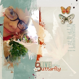 Save the butterfly