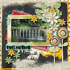 January 2014 Monthly Layout Contest - Reflection
