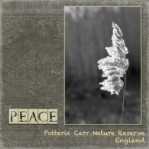 "PEACE - My ""Word"" for 2012"