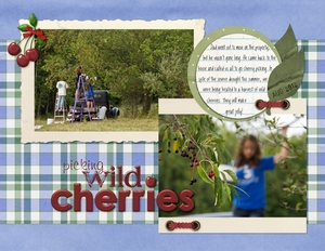 Week 1--picking wild cherries