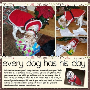 Every Dog Has His Day #2