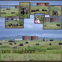 Saturday Color Challenge - 7-21-12 -- New Neighbors