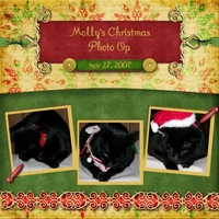 Molly's Christmas Photo Op