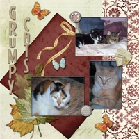 August 9th Scraplift Challenge -- Grumpy Cats