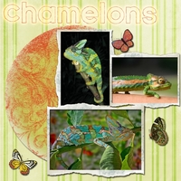Tuesday 5-8-12 Freebie Challenge --  Chamelons