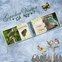 Tuesday 7-24-12 Freebie Challenge -- Backyard Birds