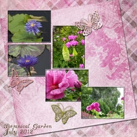 Thursday 8-2-12 Challenge -- Purple and Pink Flowers