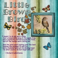 Saturday 5-19-12 Color Challenge -- Brown Bird