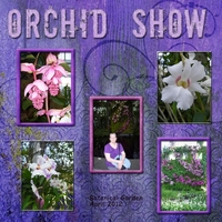 Saturday 1-26-13 Color Challenge -- Orchid Show 2012