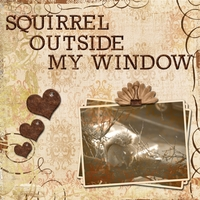 Task 4 -- Squirrel Outside My Window