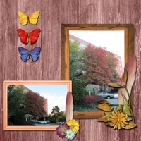 Tuesday 11-26-13 Freebie Challenge -- Autumn Trees