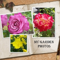 My Garden Photos