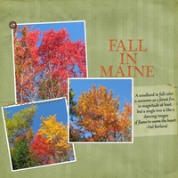 DSD - Speed Scrap - Fall In Maine