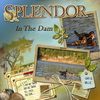 Splendor In The Dam