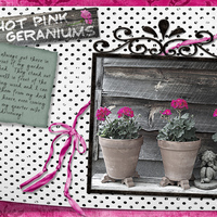 B&Wchal_myHotPnkShedGeraniums