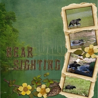 Mon. 6/24 Challenge - Bear Sighting