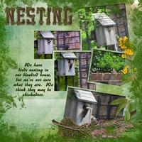 SS Use It Chat - Nesting