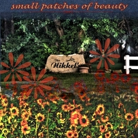SMALL PATCHES OF BEAUTY