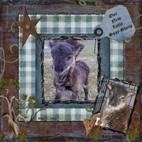 """Newest Member to our Farm """"Little Soay Lamb"""""""