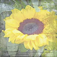 Art Inspiration - Sunflower