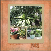 Pots-Color Green