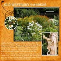 Sat. Color 9/8 - Old Westbury Gardens