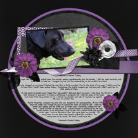 2014-04-29 8 Layouts - One Template