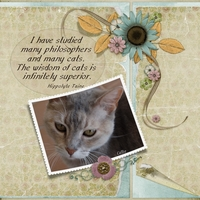 The Wisdom of Cats - 6-7 Freebie Challenge