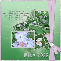 Wild Rose-Re-JUNE-venate 2013-task 20