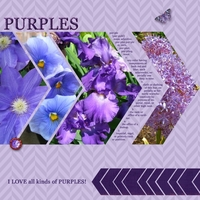 "Thursday Challenge 11/7/13: ""12 Purples!"""