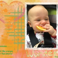 Project Life 2013 - I like Oranges!