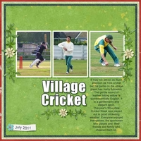 Colour challenge 30/7 Village Cricket