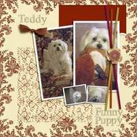Funny Puppy (Fri Customer & Sat color)