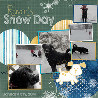 Saturday Color Challenge 1/4/14. Raven's Snow Day