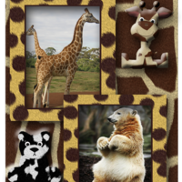 Giraffes and Bears ATC