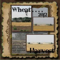 Texas Wheat Harvest