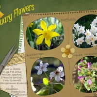 21Feb12 Freebie Challenge - February Flowers