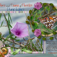 MM LO #3 - Flora and Fauna of Florida