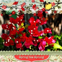 April 2 - Freebie - Spring Has Sprung