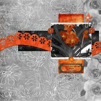 Sept 9 - Sat Color - Orange Orchid