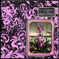 Oct 27 - Sat Color - Pink Orchid