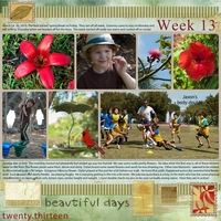 Project Life Week 13