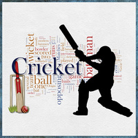 Monday Challenge - Cricket