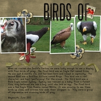 HNC Journalling - Birds of Prey LHS