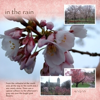 Project Life April #3: Cherry Blossoms (right)