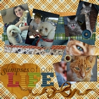 Tuesday Freebie Challenge 11/20/12