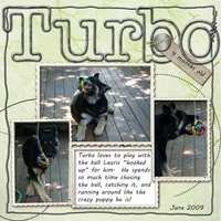 Turbo W Ball1